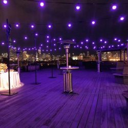 chauvet_festoon_outdoor_1